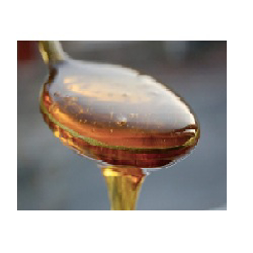 Picture of Agave Syrup Gallon Size