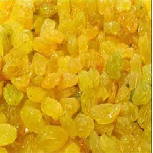 Picture of Golden Raisins 5#