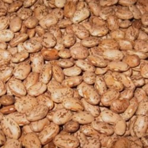 Picture of Pinto Beans 25# bag Organic