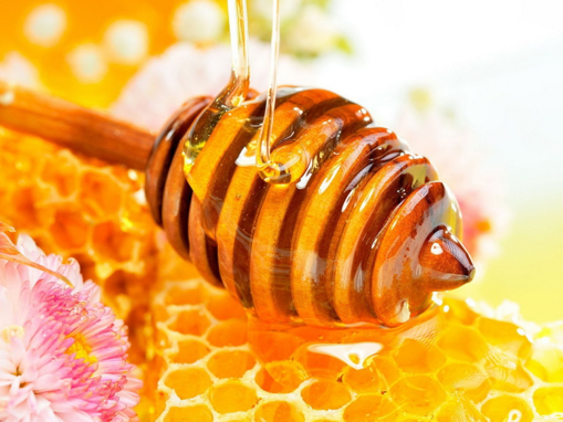 Picture of Honey, Wildflower 40# pail